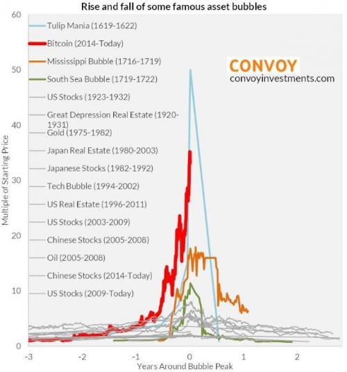 Bitcoin Tulip Bubble